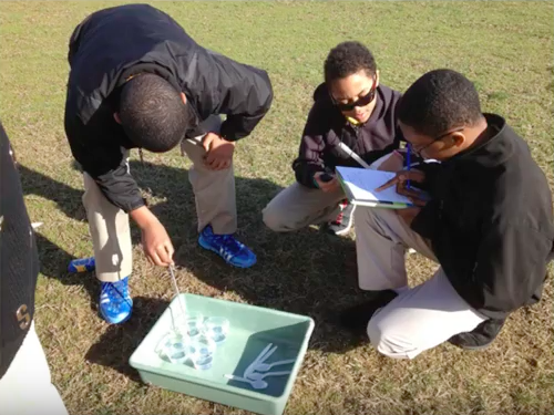 Students conducting experiment outdoors